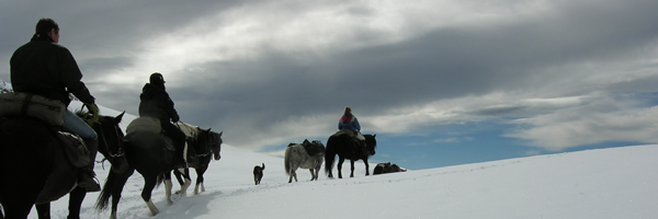 Early snow for the horse trek down South