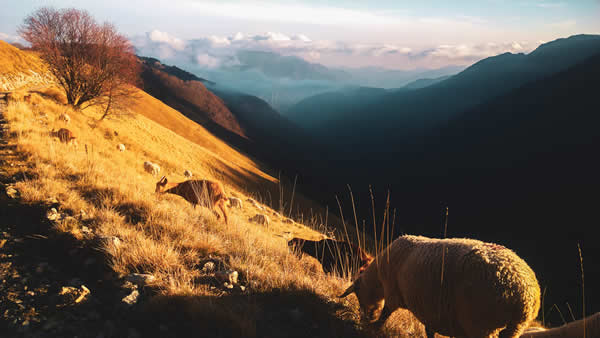Gordolasque Valley